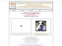 formation-educateur-canin.com