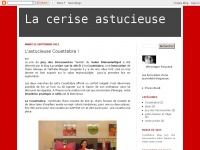 laceriseastucieuse.blogspot.com