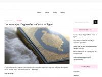 mulhousebienvenue.com