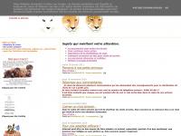 chats-de-charleroi.blogspot.com