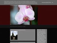 Art et Vie - Anne Dijon-Willame