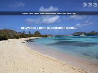 Croisiere-bleue.net