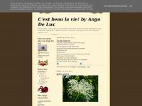 Angolicious.blogspot.com
