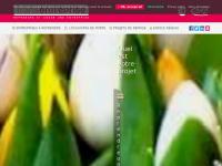 transentreprise.com