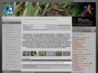 faune-anjou.org