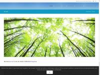 voyance-alyena.fr