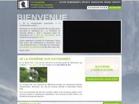 pandemie-nouveaumonde.fr