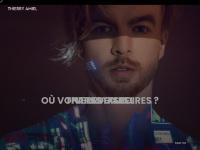 thierryamiel.com