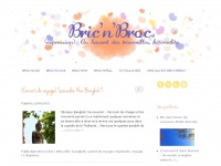 bricnbroc.com