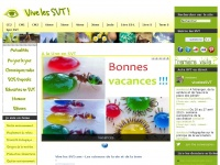 vivelessvt.com