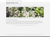photographielaura.weebly.com