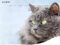 Foyerfelin.free.fr