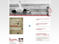 shenjiying.com