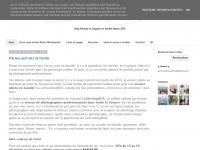 petitesmarionnettes.blogspot.com