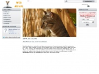 web-animal.com