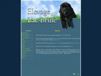 lelacbrule.com
