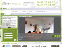 Carnot-immobilier-lille.com