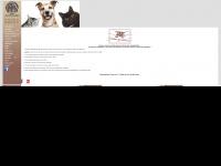 animado.com