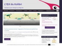 kolibricoaching.com