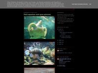 Catyphotos.blogspot.com