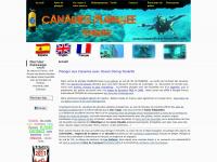 oceandivingtenerife.com