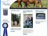 saintvalay-equitation.fr