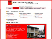 bolliger-immobilier.ch