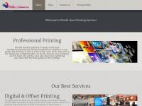 antilles-catamaran.com