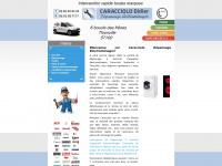 depannage-electromenager-caracciolo.fr