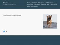 hok.ch
