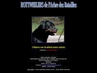 rottweiler-france.com