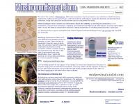 mushroomexpert.com