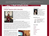 nomadesse.blogspot.com