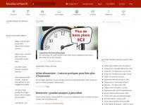 maxibonsplans.info