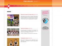 fsg-sales.ch