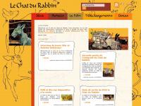 chat-du-rabbin.com