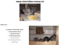 chinchillas-suisse.ch