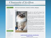 davillon.com