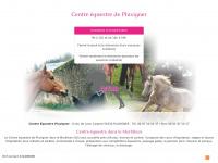 centre-equestre-pluvigner.com