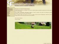 cfquarterhorses.ch
