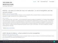 sologne-en-montgolfiere.fr