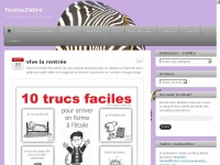 toulouzebre.wordpress.com