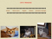 Cats-paradise.ch