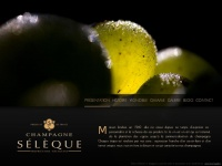 Champagne-seleque.fr