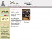 Carole-baillargeon.ca
