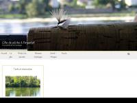 mediapeche.com