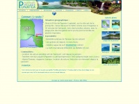 punatea.com