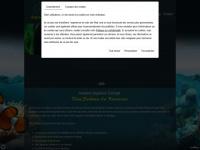 arowana-aquarium-concept.com