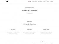 labradors-dog.com