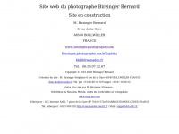 birsingerphotographe.com
